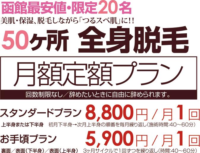 depi_teigaku_03